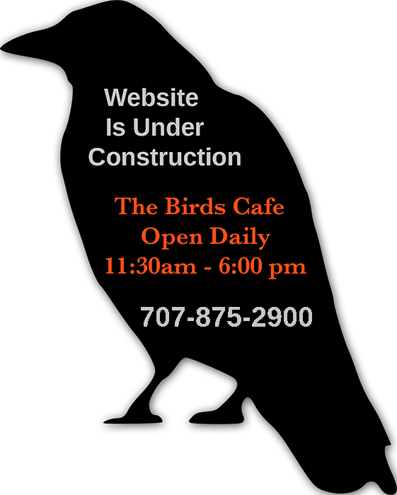 The Birds Cafe